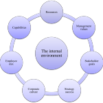 Internal Environment Factors