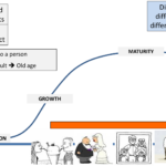 Overview of the Product Life Cycle (PLC)