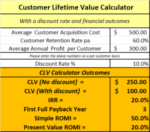 Financial Metrics for CLV