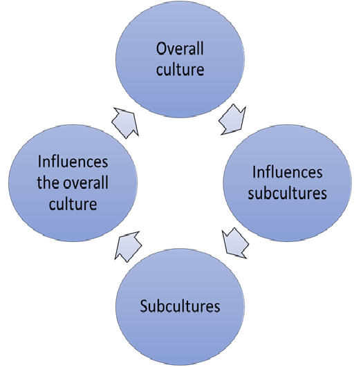 culture and subculture relationship cycle